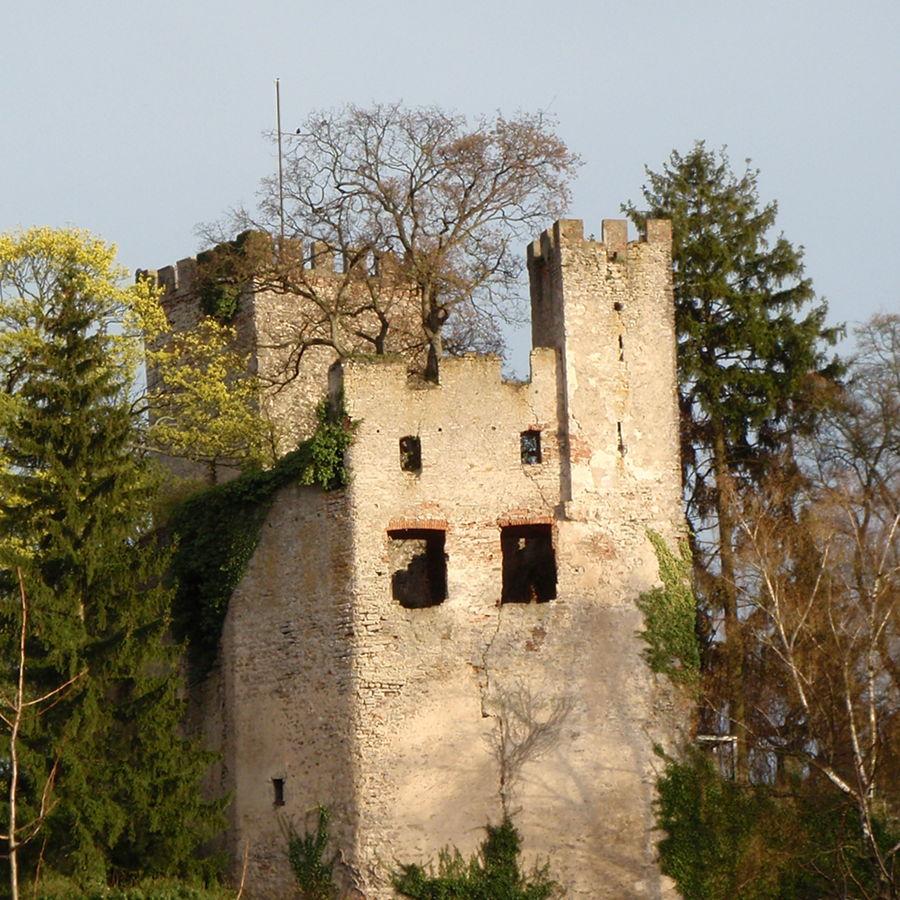 Burg Obergrombach